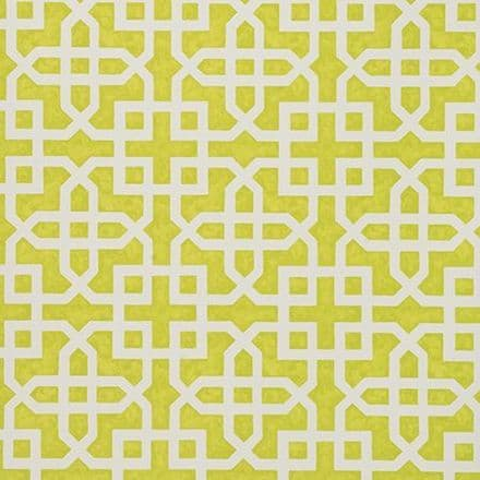 Clarke & Clarke Monserrat Wallpaper in Citron