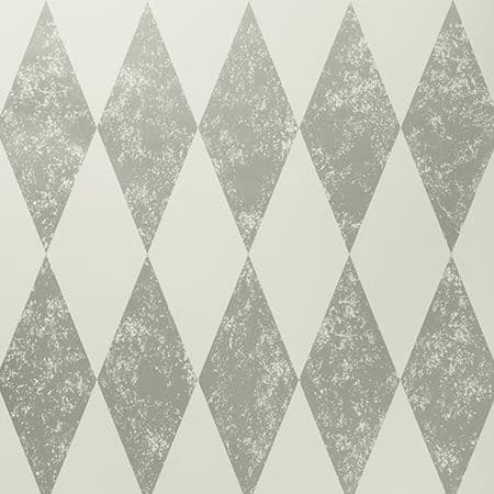 Clarke & Clarke Tortola Wallpaper in Nickel