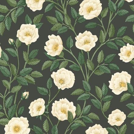 Cole & Son Hampton Roses Wallpaper  118/7016
