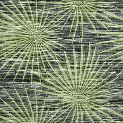 Thibaut Palm Frond Wallpaper in Black and Green