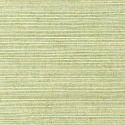 Thibaut Shang Extra Fine Sisal Wallpaper in Willow