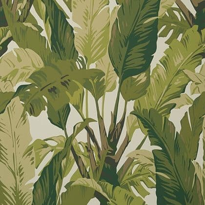Thibaut Travelers Palm  Wallpaper in Sage