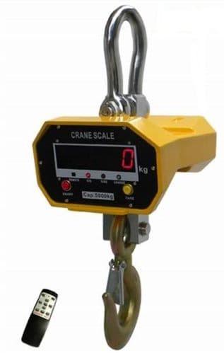 Everight OCS-SL Crane Scale